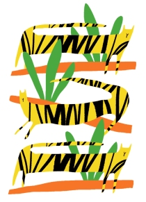 Three Yellow Tigers_mercedes leon merchesico_web