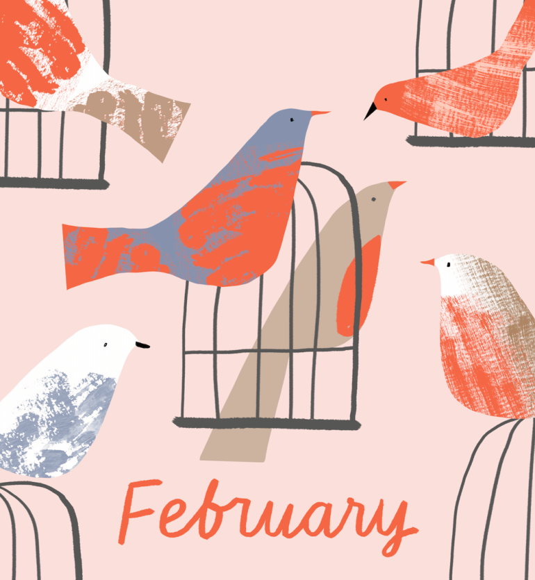 pets calendar marksandspencer_ birds illustration mercedes leon