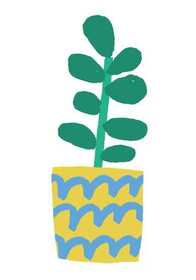 plants ive loved illustration mercedes leon merchesico